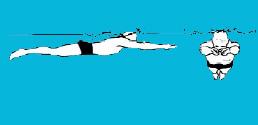 آموزش شنای قورباغه